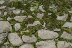 Los adoquines en la hierba contexto Imágenes de archivo libres de regalías
