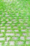 Los adoquines pavimentados empiedran estiramientos del camino en la distancia Imagenes de archivo