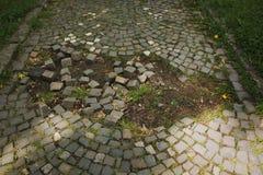 Los adoquines quebrados con la hierba en la ciudad parquean Fotos de archivo