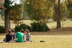 Los adultos jovenes se sientan en la manta y hablan en parque Foto de archivo