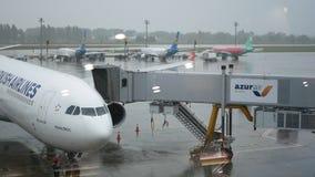 Los agregados del puente del jet de las puertas a Turkish Airlines acepillan en el aeropuerto de Boryspil almacen de video