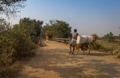 Los aldeanos vuelven con las cosechas cosechadas en el extremo del día a su pueblo rural Imágenes de archivo libres de regalías