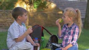 Los alumnos comen los bocadillos y charla durante el tiempo del almuerzo que se incorpora en césped en cierre del patio almacen de video