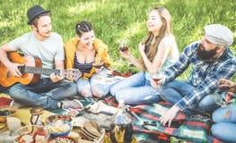 Los amigos agrupan tener animar al aire libre de la diversión en la barbacoa de la comida campestre del Bbq Fotos de archivo
