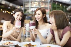 Los amigos celebran con la tostada y el tintineo en restaurante fotos de archivo libres de regalías