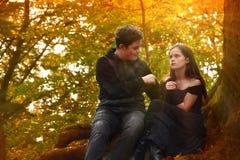 Los amigos disfrutan de un humor romántico en el bosque del otoño imagen de archivo libre de regalías