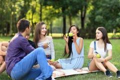 Los amigos en comida campestre, hombre joven lanzan una manzana a la mujer Fotos de archivo libres de regalías