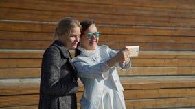 Los amigos hacen Selfie almacen de video