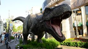 Promotional T-rex for the upcoming film Jurassic World: Fallen Kingdom. Los Angeles, CA: May 6, 2018: Promotional T-rex for the upcoming film Jurassic World stock video footage