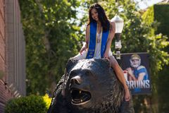 UCLA graduate on Bruin Bear. LOS ANGELES, CA/USA - April 27, 2016: 2016 UCLA graduate on Bruin Bear on the University of California, Los Angeles, campus. For Stock Image