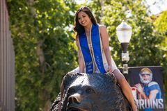 UCLA graduate on Bruin Bear. LOS ANGELES, CA/USA - April 27, 2016: 2016 UCLA graduate on Bruin Bear on the University of California, Los Angeles, campus. For Royalty Free Stock Image