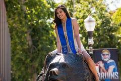 UCLA graduate on Bruin Bear. Royalty Free Stock Image