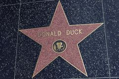 Hollywood Walk of Fame Star Donald Duck. Los Angeles, CA, USA - February 02, 2018:  The Hollywood Walk of Fame star of Donald Duck located on Hollywood Blvd Stock Image