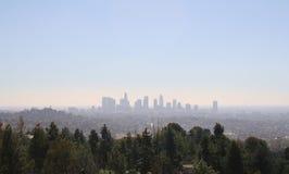 Los Angeles Cityscape med träd Arkivfoton