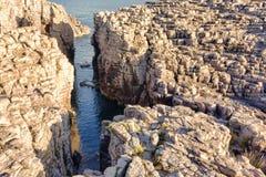 Los Angeles Conca, San Pietro s wyspa - Zdjęcie Royalty Free