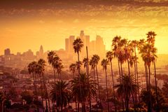 Los Angeles downtown skyline. Beautiful sunset of Los Angeles downtown skyline and palm trees in foreground royalty free stock photos