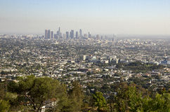 Los Angeles Downtown Skyline in Distance. As Seen from Griffith Park royalty free stock photography
