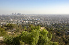 Los Angeles Downtown Skyline in Distance 3. Los Angeles Downtown Skyline in Distance as Seen from Griffith Park royalty free stock photo