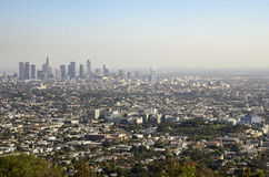 Los Angeles Downtown Skyline in Distance 4. Los Angeles Downtown Skyline in Distance as Seen from Griffith Park royalty free stock photos