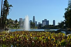 Los Angeles Echo Park. With LA skyline in the background Stock Images