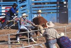 Los Angeles Fiesta De Los Vaqueros, Tucson, Arizona Obrazy Stock