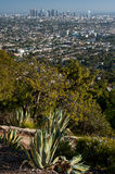Los angeles from Griffith park Stock Photography