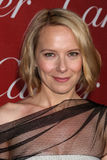 Amy Ryan Photo libre de droits