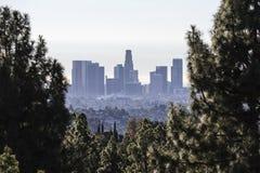 Los Angeles linia horyzontu lasu widok obrazy royalty free