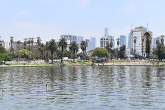 Los Angeles MacArthur Park. View of Los Angeles buildings from MacArthur Park Royalty Free Stock Image