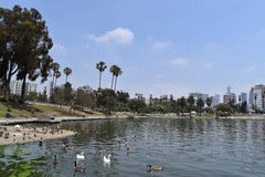 Los Angeles MacArthur Park. View of Los Angeles buildings from MacArthur Park Stock Image