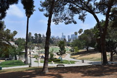 Los Angeles MacArthur Park. View of Los Angeles buildings from MacArthur Park Stock Images