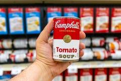 Los Angeles, mano del cliente di CA/USA 6/6/2019 che tiene un barattolo di latta della minestra del pomodoro di marca di Campbell immagine stock libera da diritti