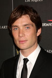 Cillian Murphy Royalty Free Stock Image