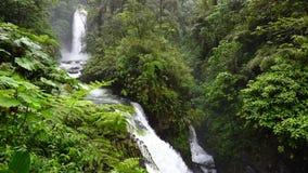 Los Angeles Paz Spada w Costa Rica zdjęcie wideo