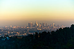 Los Angeles seen from Griffith Park Royalty Free Stock Photos