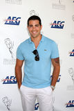 Jesse Metcalfe royalty free stock photos