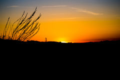 Los Angeles Sky-View Silhouette Sunset Stock Photo