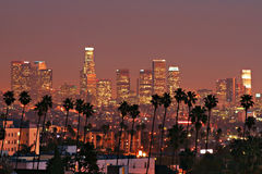 Los Angeles Skyline. Sunset view of the Los Angeles downtown skyline with palm trees in foreground Royalty Free Stock Image