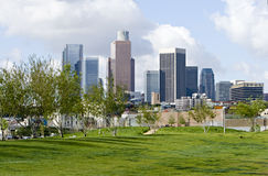 Los Angeles Skyline From Park Stock Photo