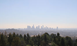 Los Angeles-Stadtbild mit Bäumen Stockfotos
