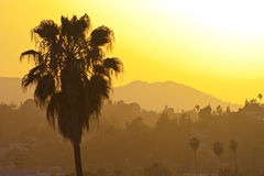 Los Angeles sunset Stock Image