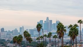 Los Angeles sunset view with palm tree and downtown in background. California, USA stock footage