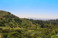 Los Angeles und Griffith Park Stockfoto