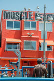 LOS ANGELES, USA - AUGUST 5, 2014 - excercise of black man in muscle beach  in venice beach Stock Image