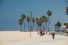 LOS ANGELES, USA - AUGUST 5, 2014 - people in venice beach landscape Stock Images