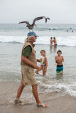 LOS ANGELES, USA - AUGUST 3, 2014 - seagull landing on a man head Stock Photo