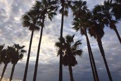 LOS ANGELES w niebie obraz royalty free