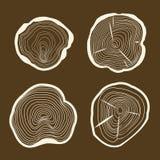 Los anillos de árbol fijados consideraron para cortar el tronco en un fondo de Brown Vector Foto de archivo
