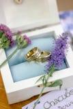 Los anillos de bodas Imagen de archivo libre de regalías