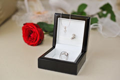 Los anillos de bodas en rectángulo negro y se levantaron Fotografía de archivo libre de regalías